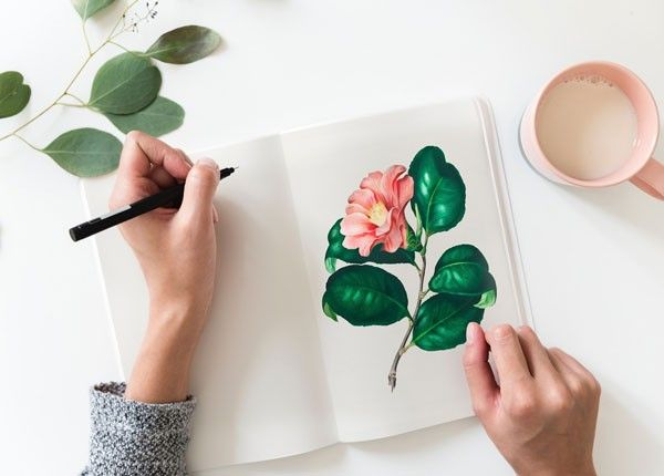 Drawing flowers